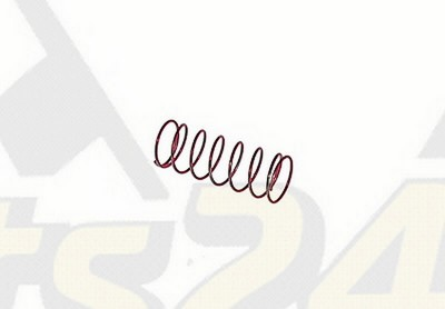 Exhaust valve spring