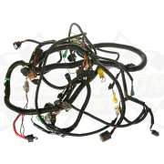 Wire harness, main