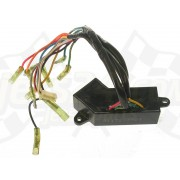 Control unit electric, trim