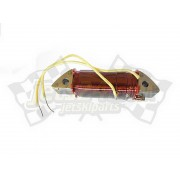Stator plate charging coil