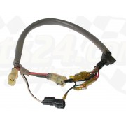 Extension wire lead (60 cm)