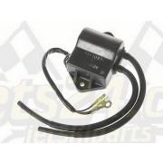 CDI, ECU, electronical module, igniter, ignition coil