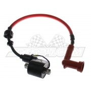 Ignition coil with high tension cord assy (middle)