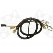 Extension wire lead