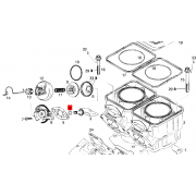 Exhaust valve assy O Ring