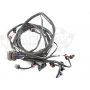 Wire harness, engine