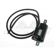 Ignition coil (LH)
