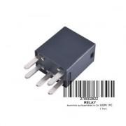 Relay 30 Amp